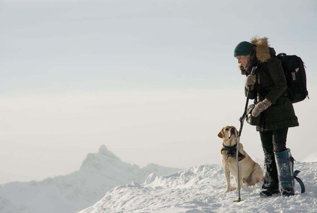 Idris elba y kate winslet protagonizan en the mountain between us - Keeping outdoor dog happy winter ...